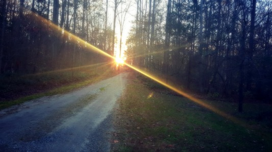 sunsetlane